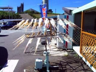 角島灯台 駐車場 イカ 乾燥