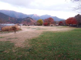 湖畔の芝生